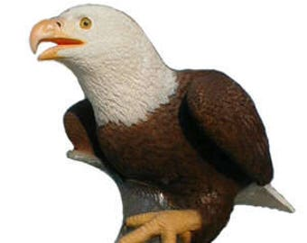American Bald Eagle with Bass sculpture