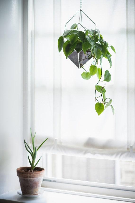 Iridis Terrarium Large For Air Plant Terrarium Or Small Etsy