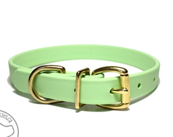 """Mint Pastel Green 3/4"""" (19mm) Beta Biothane Dog Collar - Leather Look and Feel - Custom Dog Collar - Stainless Steel or Brass Hardware"""
