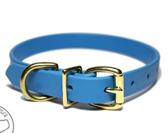 """Caribbean Blue - 3/4"""" (19mm) Wide  - Biothane Dog Collar - Leather Look and Feel - Custom Size - Stainless  or Brass Hardware"""