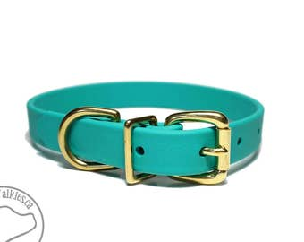 """Teal Dog Collar - NEW - 3/4"""" (19mm) Beta Biothane Dog Collar - Your choice of: Stainless Steel or Brass Hardware - Custom Sized"""