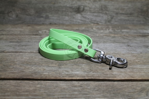 FREE SHIP! Custom MADE IN USA New Beta Biothane Dog Leash 4/' or 6/' COLORS