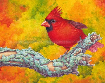 PRINT of a Northern Cardinal, Watercolor Print, Art Print, Wall Art, Home Decor, Wildlife Illustration, Nature