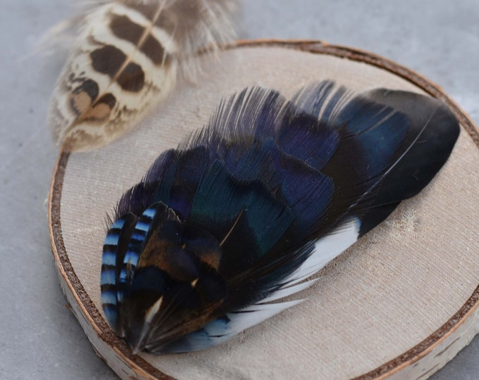 Navy Blue Feather Lapel Pin / Hat Pin Small No.72
