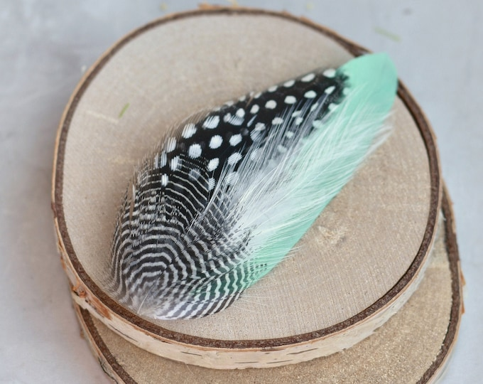 Mint Green, Spotted and Striped Feather Lapel Pin