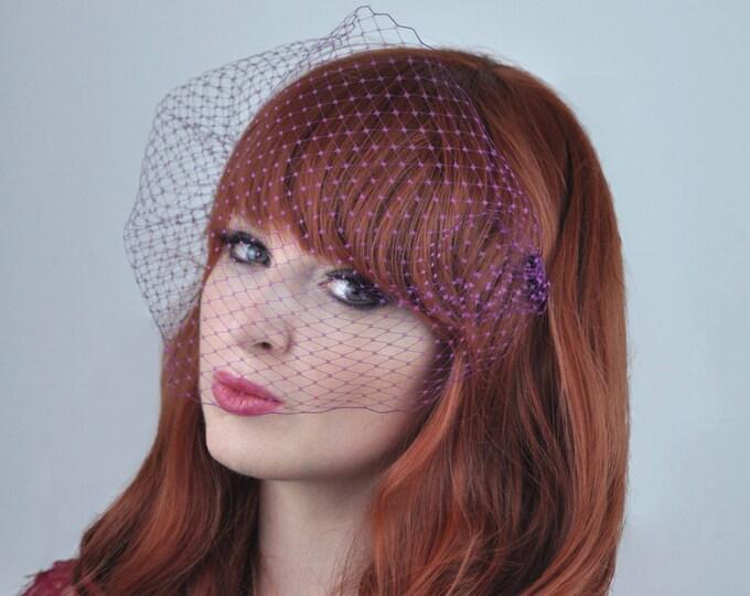 Plum Birdcage Net Veil