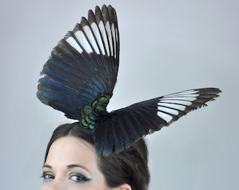 Magpie Wing Fascinator in Butterfly Effect