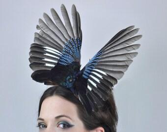 Striking Open Jay Wing Headpiece