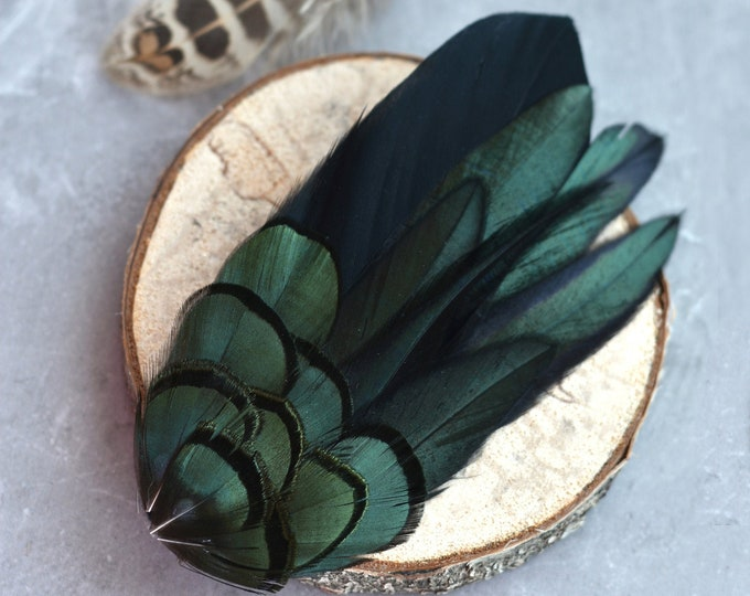 Feather Hair Clip Fascinator in Black and Green