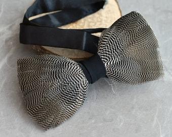 Dark Grey Pin Stripe Feather Bow Tie