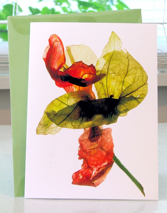 Artist Floral Note Card - Tomatillo et al