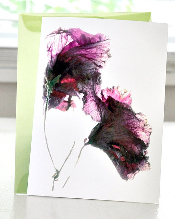 """Greeting Card Violet Breeze Thank You Artist Note Card 5""""x7"""" Blank"""