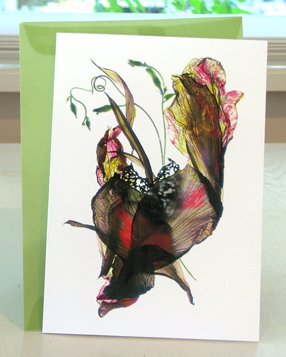 Floral Greeting Card Red Canna Heart Love Blank Note Card
