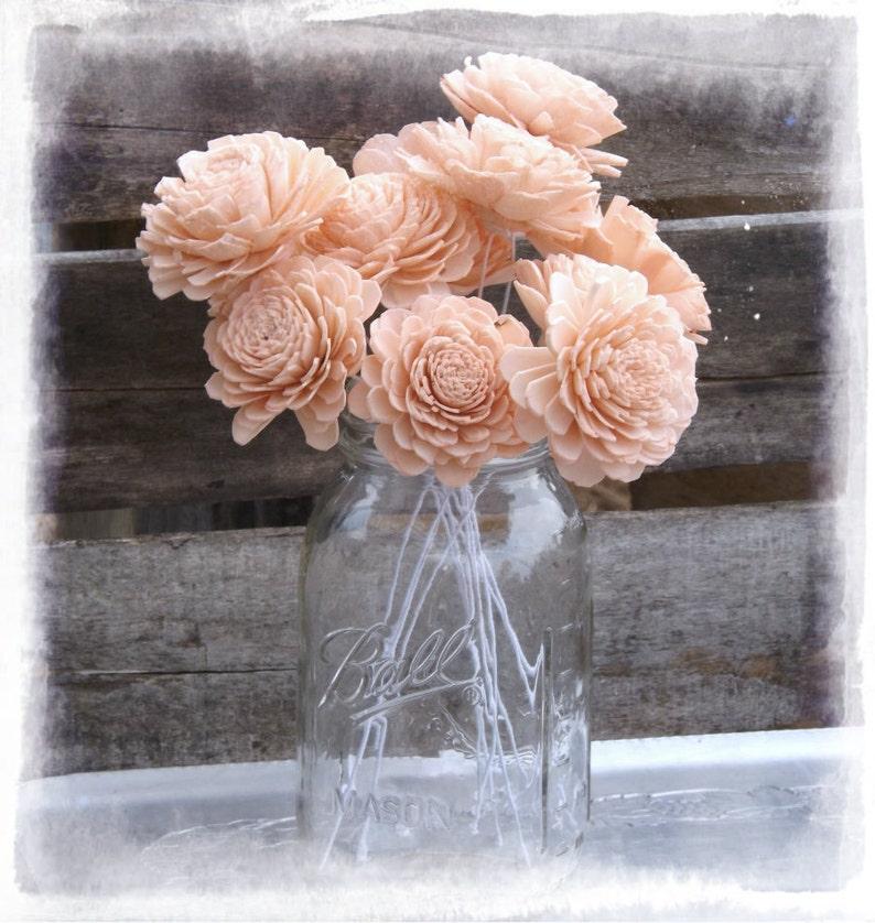 Sola Wood Flowers 2 Peach Sola Flowers Stemmed OR image 0