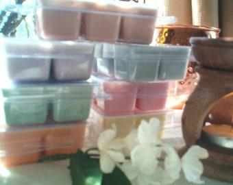 Cinnabun Soy Wax Melts, (Cinnabon Type), Luscious Baked Cinnamon Rolls, Cream Cheese Frosting, Yummy, Fresh made