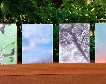 Eugene Oregon Greeting Cards  - Set of 4
