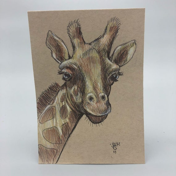 Original Giraffe drawing on 80lb Toned Paper // 5x7 inches // ink and prisma color // Nature art // original drawing // Giraffe Lovers