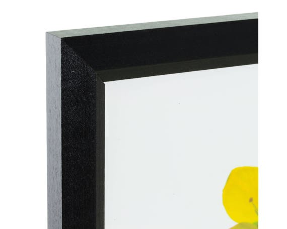 Craig Frames 24x34 Inch Black Picture Frame Economy 1 | Etsy
