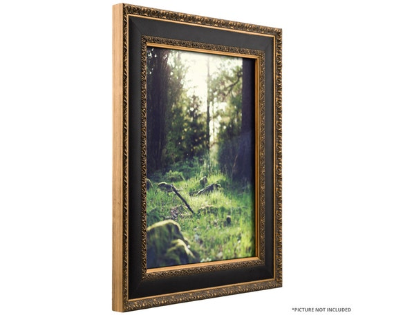 Craig Frames 16x20 Inch Antique Gold and Black Picture Frame