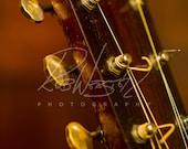 A Vintage Guitar - 14