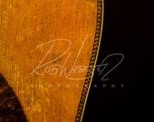 A Vintage Guitar - 7