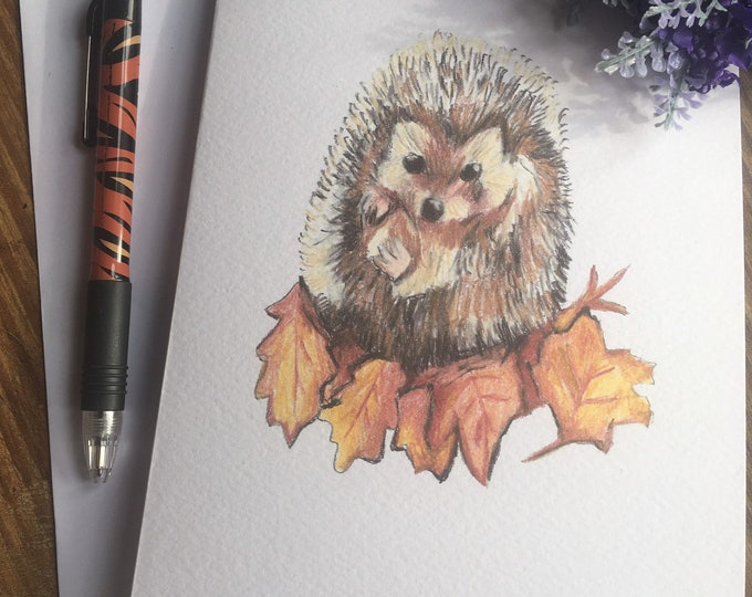 Hedgehog birthday card, greetings card, blank card, for hedgehog lovers, hedgehog gift, hedgehog gift idea