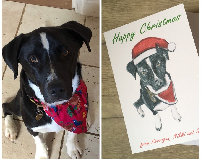 Pet portrait christmas card, dog card, cat card, for pet lovers, for animal lovers, personalised Christmas card