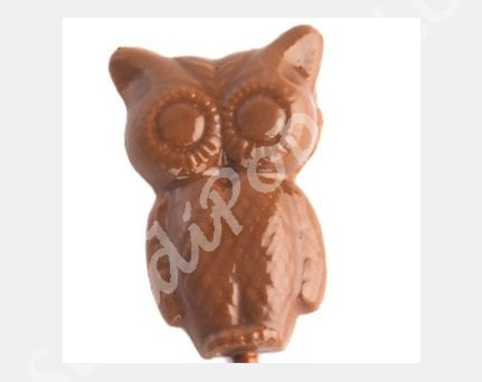 24 Baby Shower First Birthday Solid Color Owl Party Favors