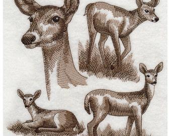 Custom Embroidered White Tailed Deer Sweatshirt S-3XL