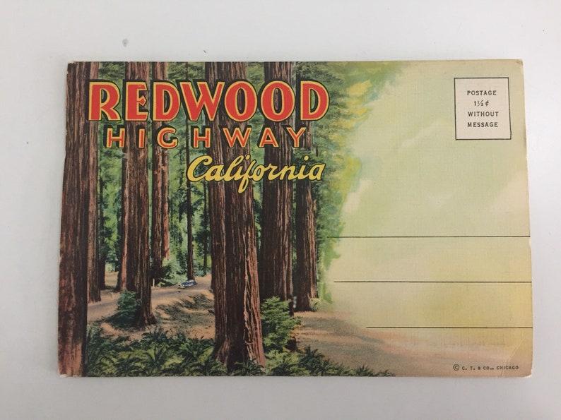 Vintage Old 1940s Redwood Highway California Souvenir Postcard Folder Booklet Fold-Out Postcards Accordion Style Card Redwood Trees Forest