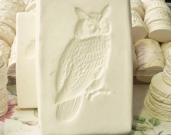 Clay Stamp Owl Face Press Mold Relief Mold or Sprig Mold Bisque Clay Stamp for Ceramic Decoration and Texture,  Pottery Tool White