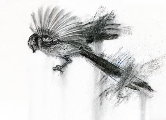 Bird Art That Bird Has My Wings Original Charcoal Drawing Of Long Tailed Tit Bird Lover Bird Gift Garden Birds Original Art Action