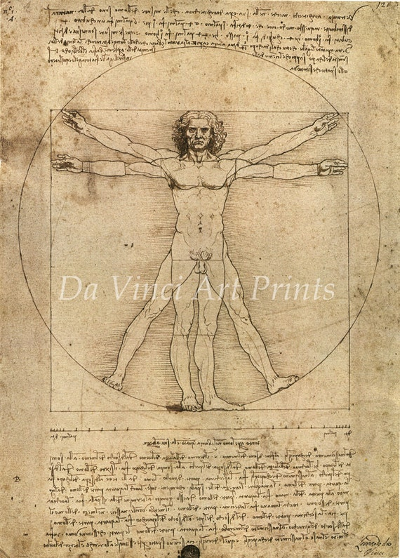 Men/'s Ladies T SHIRT cool art Da Vinci VITRUVIAN MAN science 1490 vintage