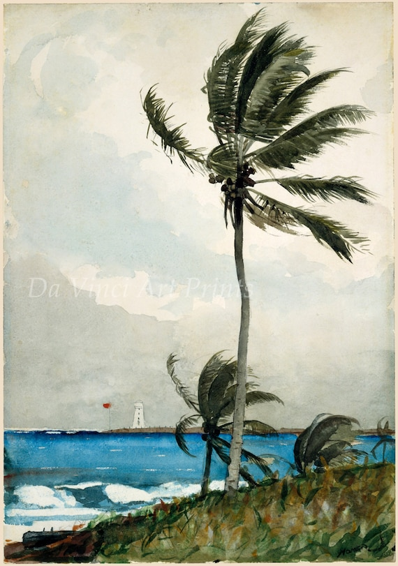 A Wall Nassau Winslow Homer Watercolor Reproductions Fine Art Print