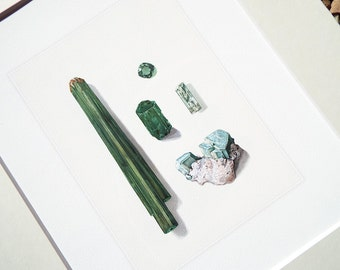 Green Tourmaline & Crystal Specimen Study in Emerald Greens and Soft Blues Archival Print