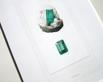 Emerald Natural Specimen & Polished Gem in Deep Green Study Archival Print