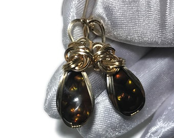 Mexican Fire Agate Earrings 14k - Gold Fill Leverback Wrapped Jewelry 1611G5-85
