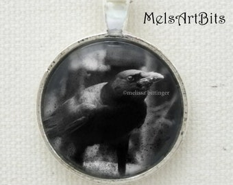 Black Bird, Raven Crow Silver Pendant Necklace / Black and White Photo Pendant Necklace Jewelry