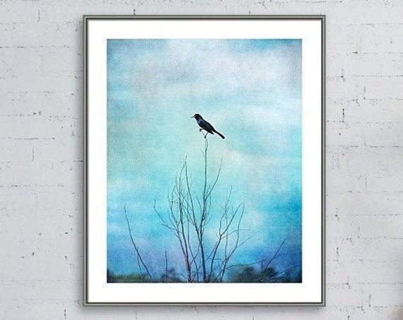 Blackbird Blues