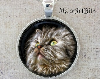 Persian Cat Portrait Green Eyed Cat Photo Pendant Necklace, Feline, Cat Lover's Jewelry Gifts Pendant Necklace Jewelry