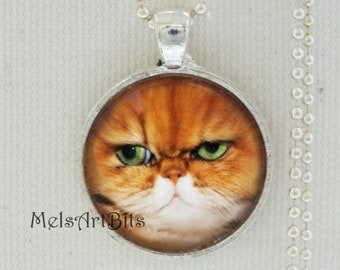 Grumpy Green Eyed Orange Persian Cat Portrait  Photo Art Pendant Necklace Jewelry Cat Lover's Gift, Cute Funny Cat Face, Whimsical Adorable