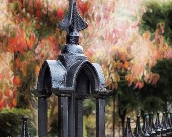 Gothic Iron Fence