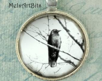 Raven Crow Black and White Raven Crow Black Bird Tree Branches  / Black Bird  Photo / Art Pendant Necklace / Photo Pendant Necklace Jewelry