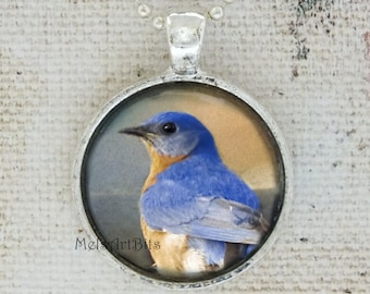 Bluebird of Happiness Nature Woodland Wildlife Photo Pendant Necklace / Orange Blue / Gifts for Her / Bird lovers Gifts Necklace Jewelry