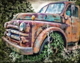 Rust Patina Old Antique Vintage 1952 Dodge Pickup Truck Rural North Carolina Fine Art Photography Print or Gallery Canvas Wrap Giclee