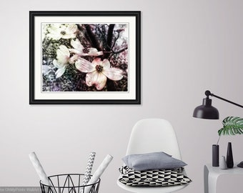 Dogwood Blooms Surreal