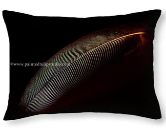 Digital Photo Art Rainbow Feather  Black Background, Modern Contemporary Minimal Accent  Pillow, Rectangle Pillow Home Decor