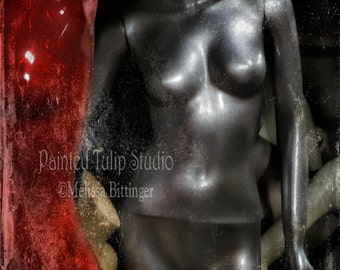 Still Life Mannequin Body Silver Red Torsos Forgotten Distressed Urban Avant Garde Fine Art Photography Print or Gallery Canvas Wrap Giclee