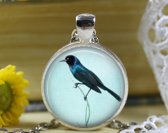Blackbird Blue Sky Photo Pendant Necklace Jewelry