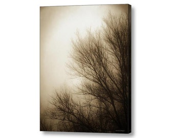 Foggy Winter Dawn Tree Branches Silhouette  Zen Woodland Nature Landscape Sepia Brown Cream Fine Art Photography Giclee Gallery Wrap Canvas